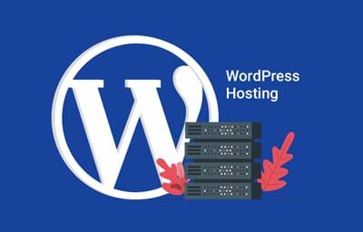 Managed WordPress web hosting for eCommerce websites