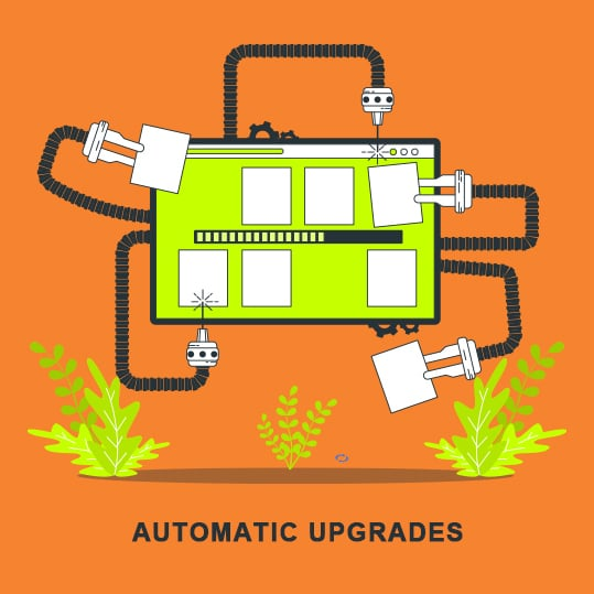If you want to be sure about your web server's defence against hacks and data breaches, you should enable automatic updates and upgrades