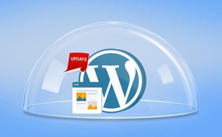 outdated WordPress core and plugins