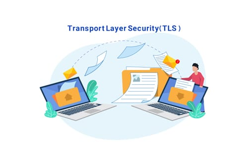 TLS is possibly another SSL-related term you have come across around the web