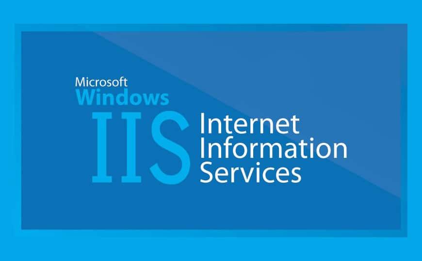 How The IIS Works